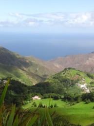 Saint-Helena island