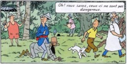 Case extraite de l'album Tintin et les Cigares du Pharaon. Les images extraites de l'œuvre de Hergé sont la propriété exclusive de MOULINSART SA © Hergé-Moulinsart 2019